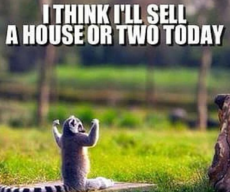 Now That's Positive Attitude! Keep The Spirit! #realestatebusiness #realtor #homeselling #funnyfriday #tgif