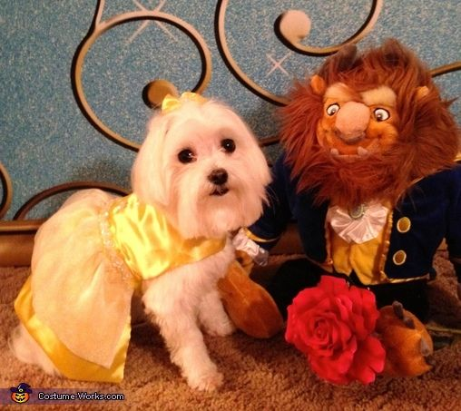 Belle From Beauty And The Beast Halloween Costume Contest At
