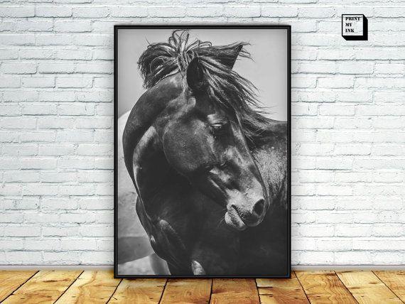 Fotografía de caballo, caballo de impresión, fotografía blanco y negro, cartel de caballo negro, caballo caballo salvaje, para imprimir, impresión del arte de la pared, descargar caballo