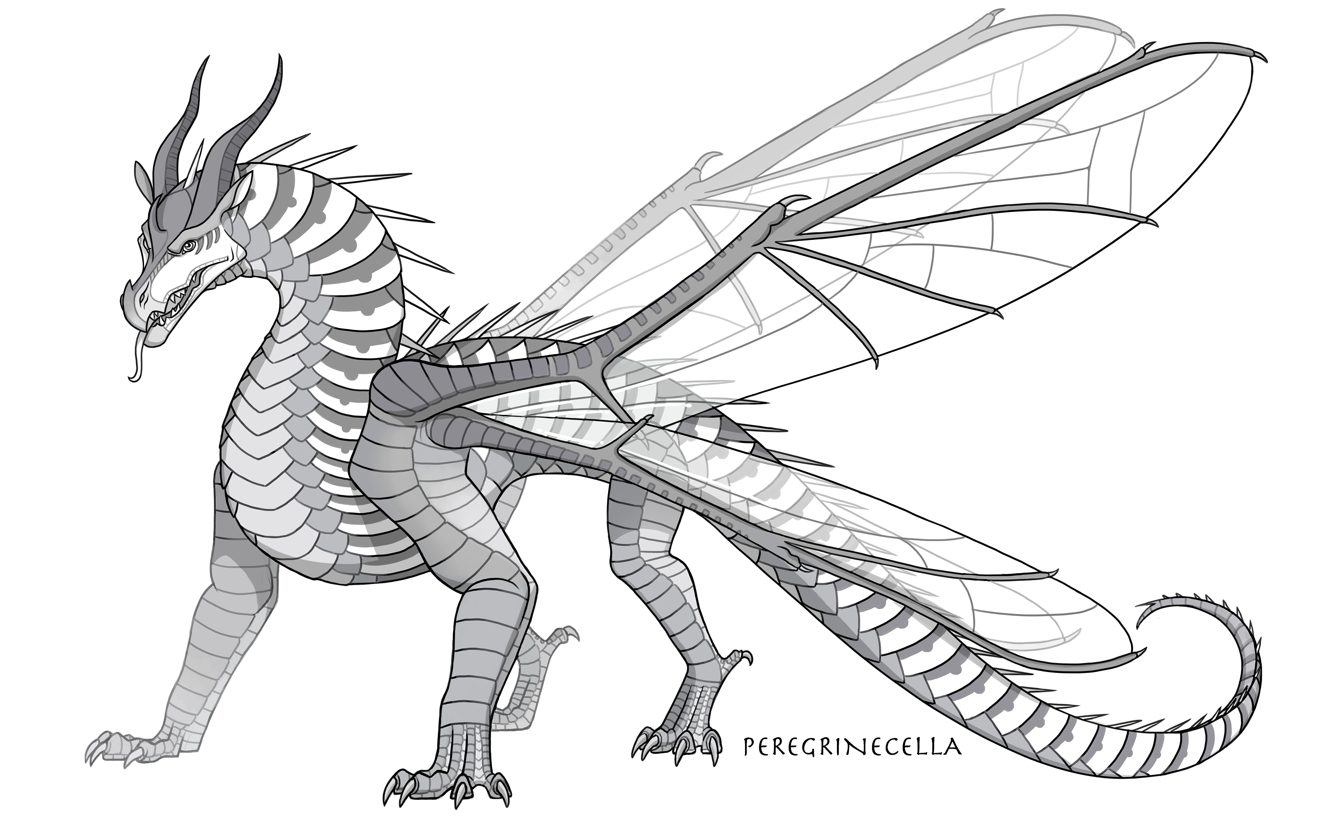 Hivewing Base By Peregrinecella On Deviantart In 2020 Wings Of Fire Dragons Wings Of Fire Dragon Sketch