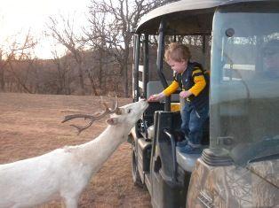Hidden Lake Rv Park And Safari Jacksboro TX This Has A High