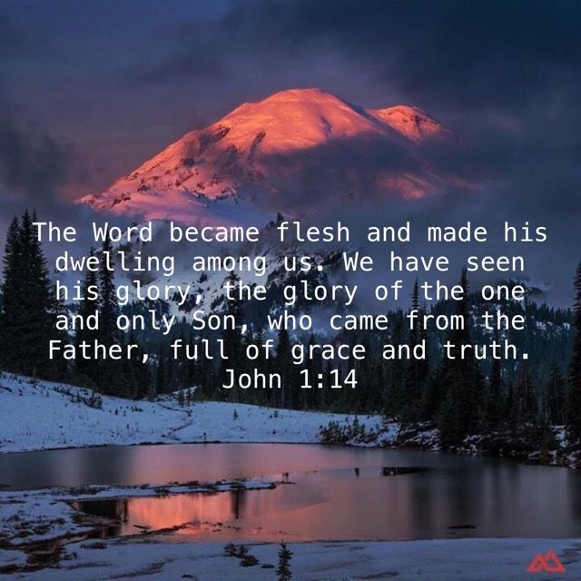 John 114 (With images) Todays verse, Bible apps, New