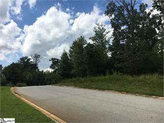 Fountain Inn, Greenville County, Upstate, SC Land For Sale - 1 19