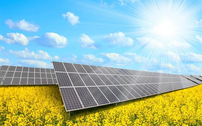 Solar Panels Field Sun Solar Power System Solar Solar Power System What Is Solar Energy