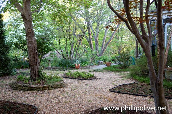 I would love my backyard to be like this with the gravel.  Simple and easy to maintain.
