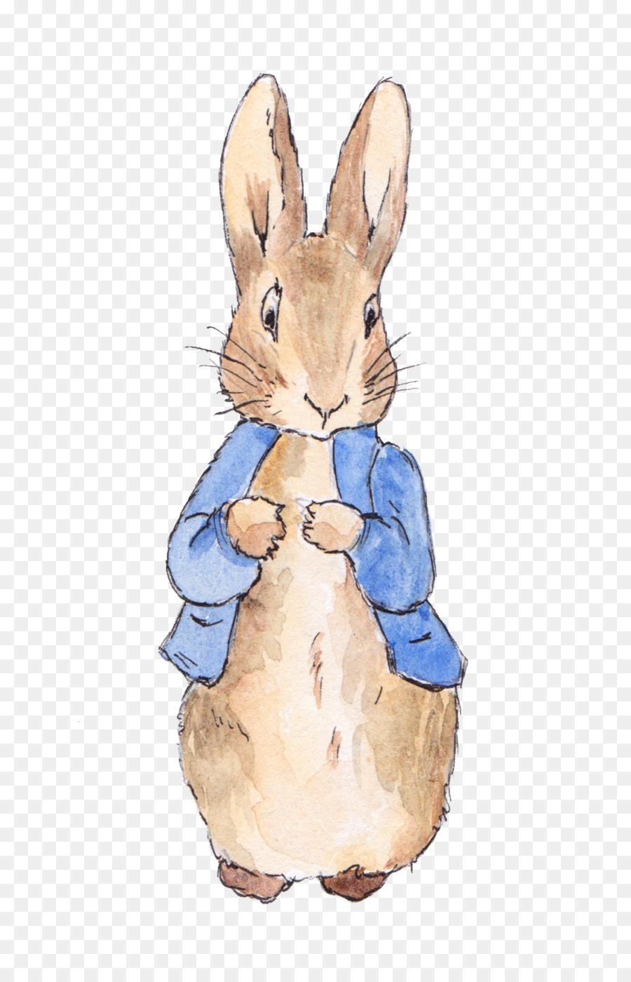 Peter Rabbit Png Free Peter Rabbit Png Transparent Images 28761 Pngio Peter Rabbit Illustration Peter Rabbit And Friends Rabbit Illustration