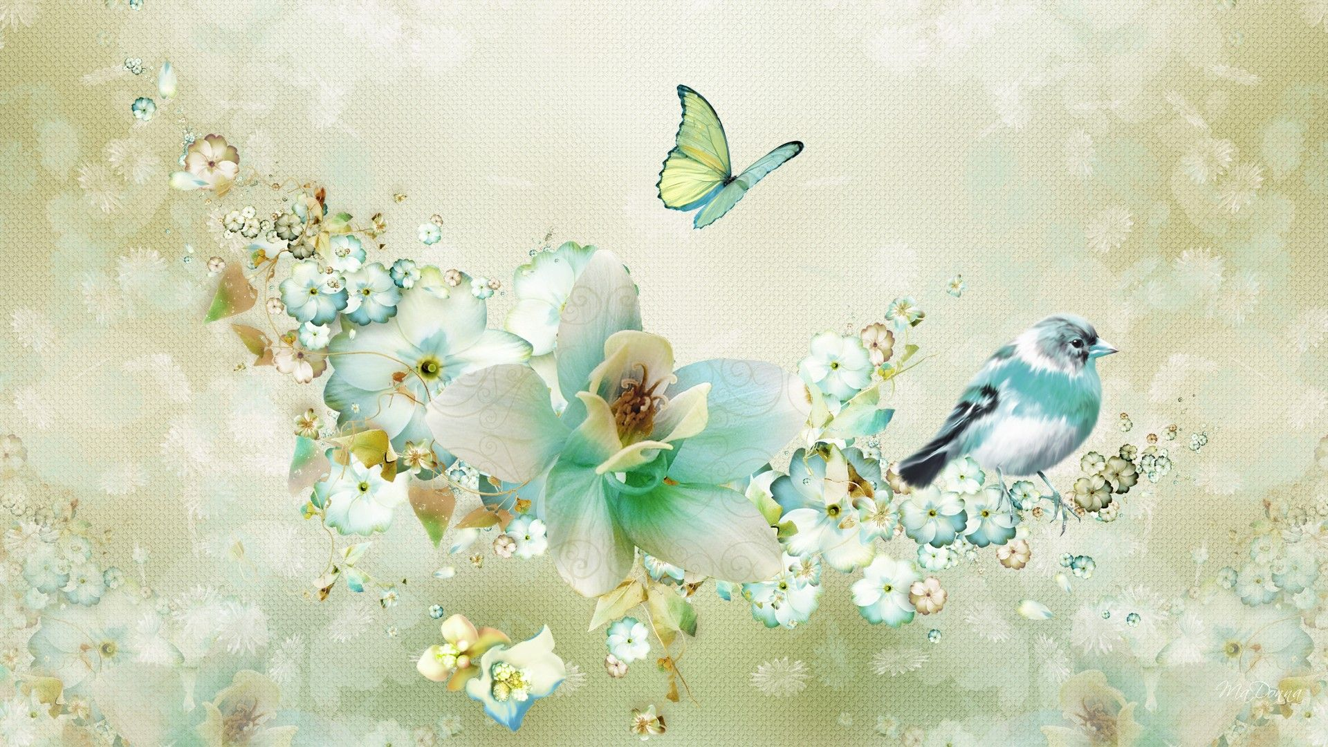 Spring Flowers And Birds Hd Images 3 Spring Flowers Wallpaper Butterfly Wallpaper Flower Wallpaper