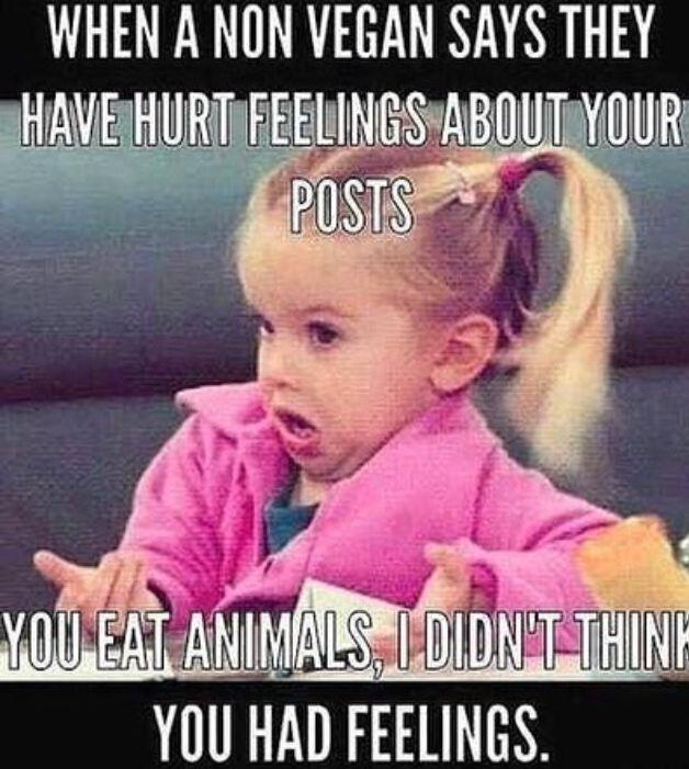 Funny Pro Vegan Memes : Vegan meme af funnies pinterest