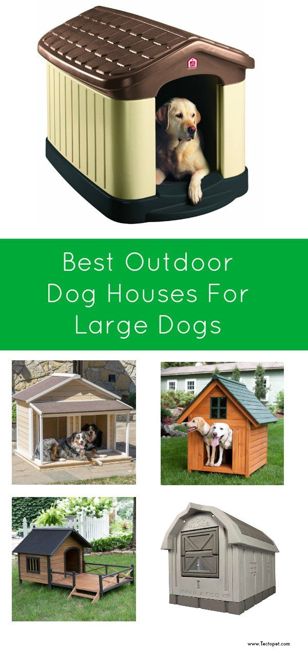 Best Outdoor Dog Houses For Large Dogs Tectopet Com Dog Houses