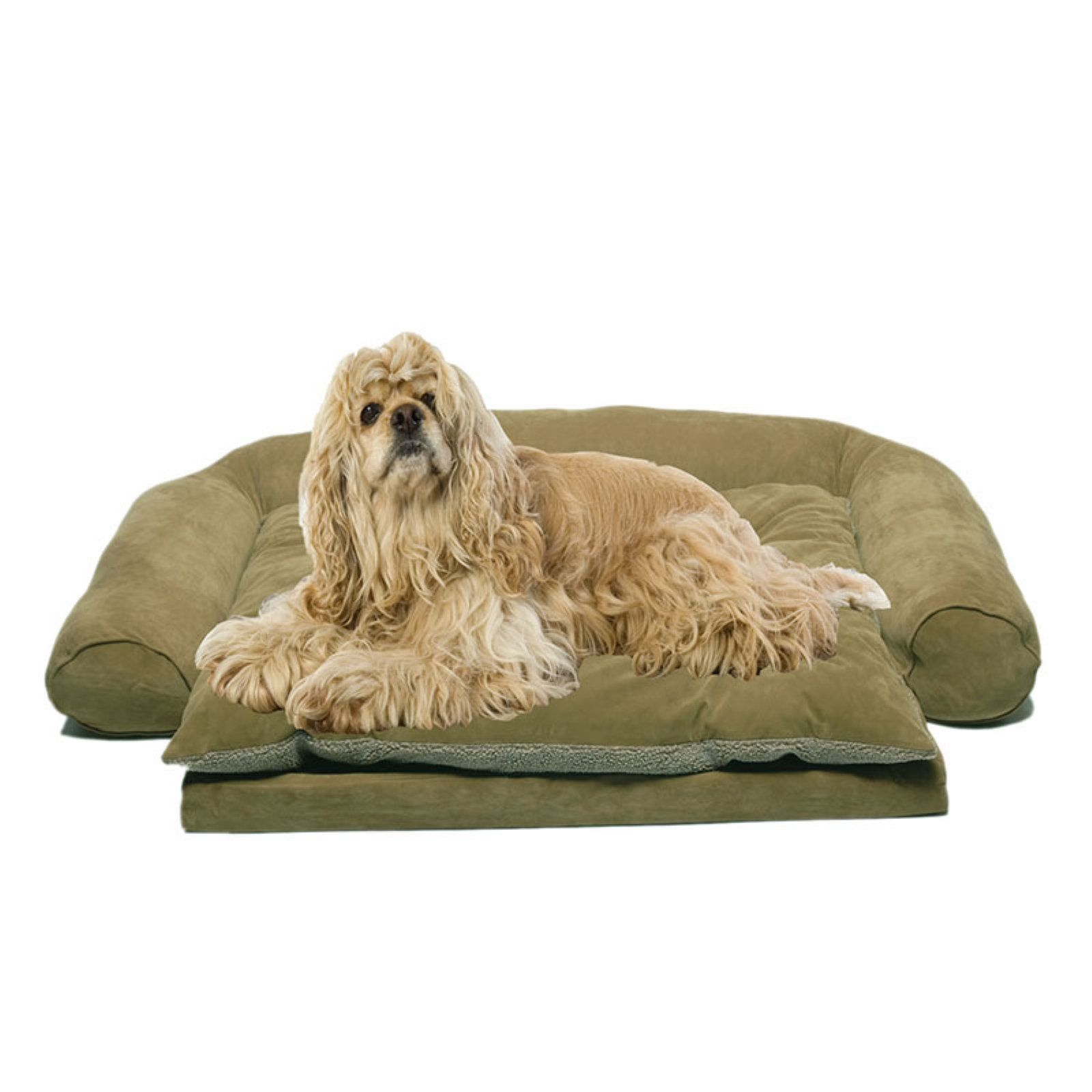 Carolina Pet Company Personalized Ortho Sleeper Comfort