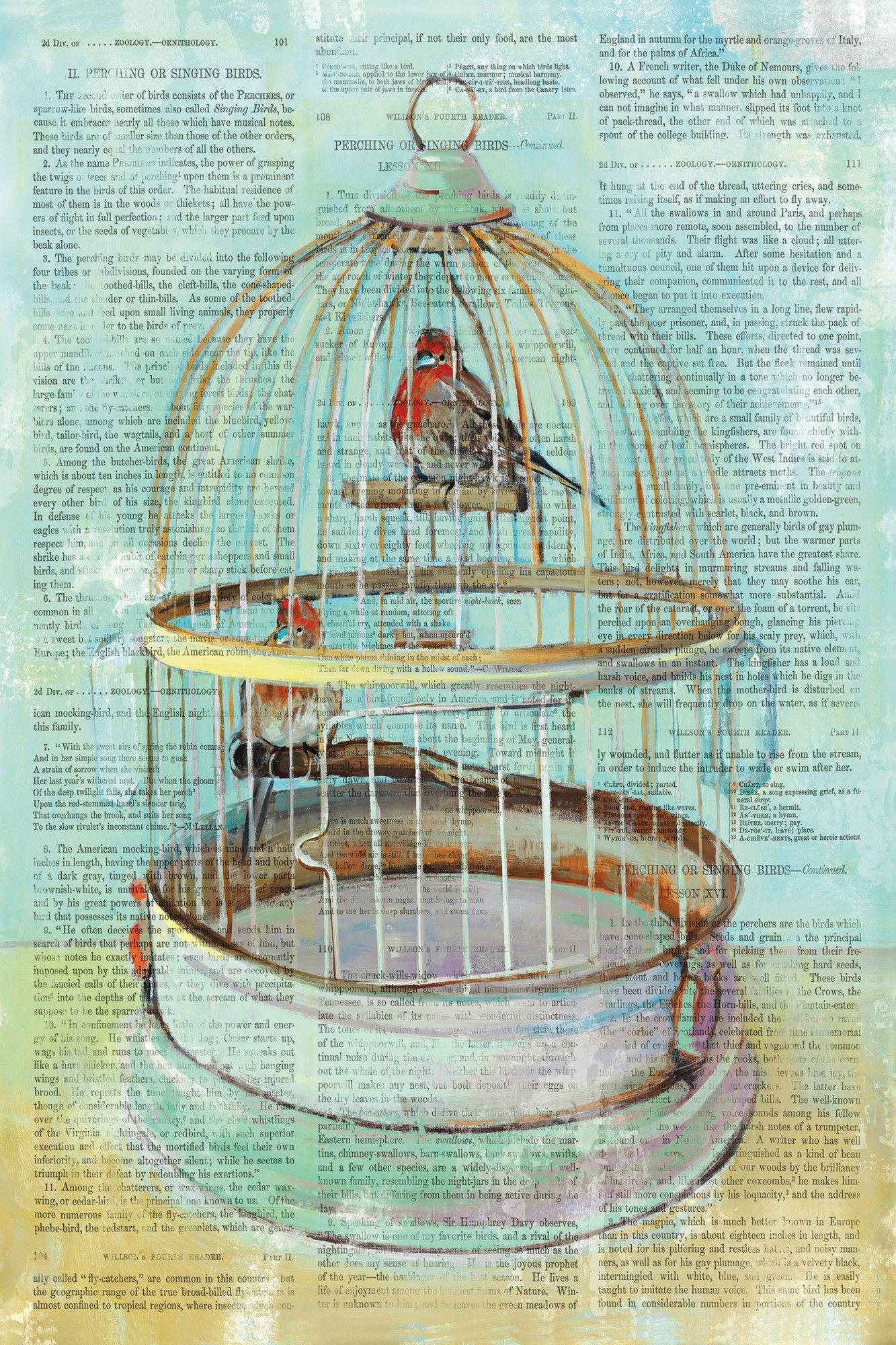 Portfolio Canvas Birdcage Dictionary I Version 2 By Elinorluna Graphic Art On Wrapped Canvas Stretched Canvas Wall Art Canvas Decor Canvas Art Prints