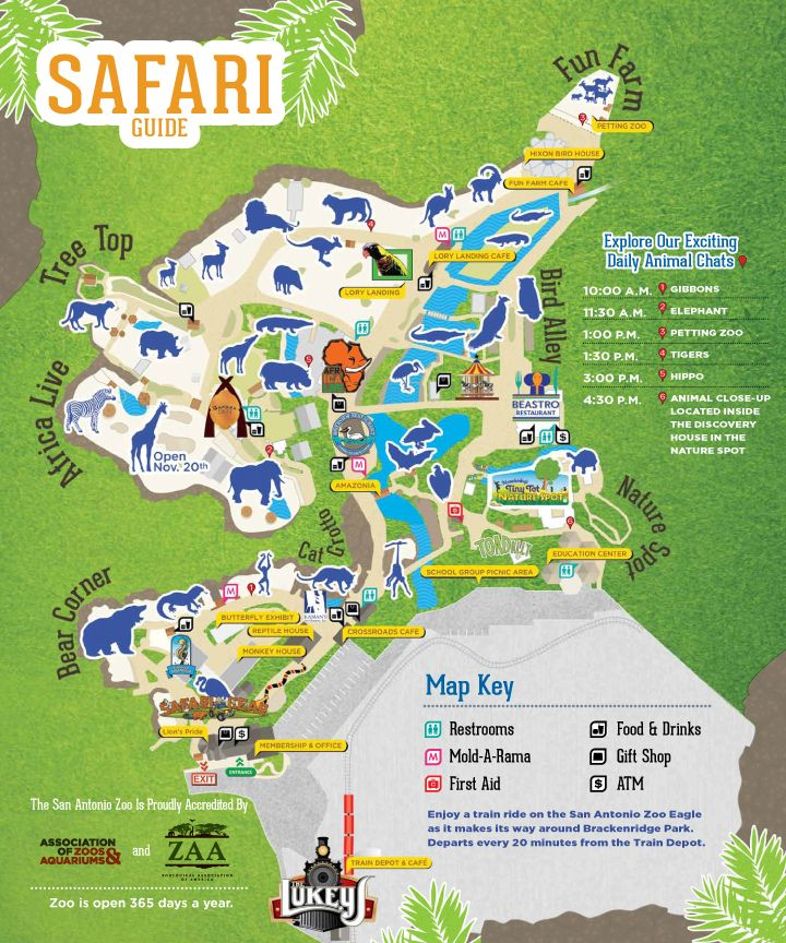 San Antonio Zoo Map San Antonio Zoo   About the Zoo | Zoos & Aquariums in 2019  San Antonio Zoo Map