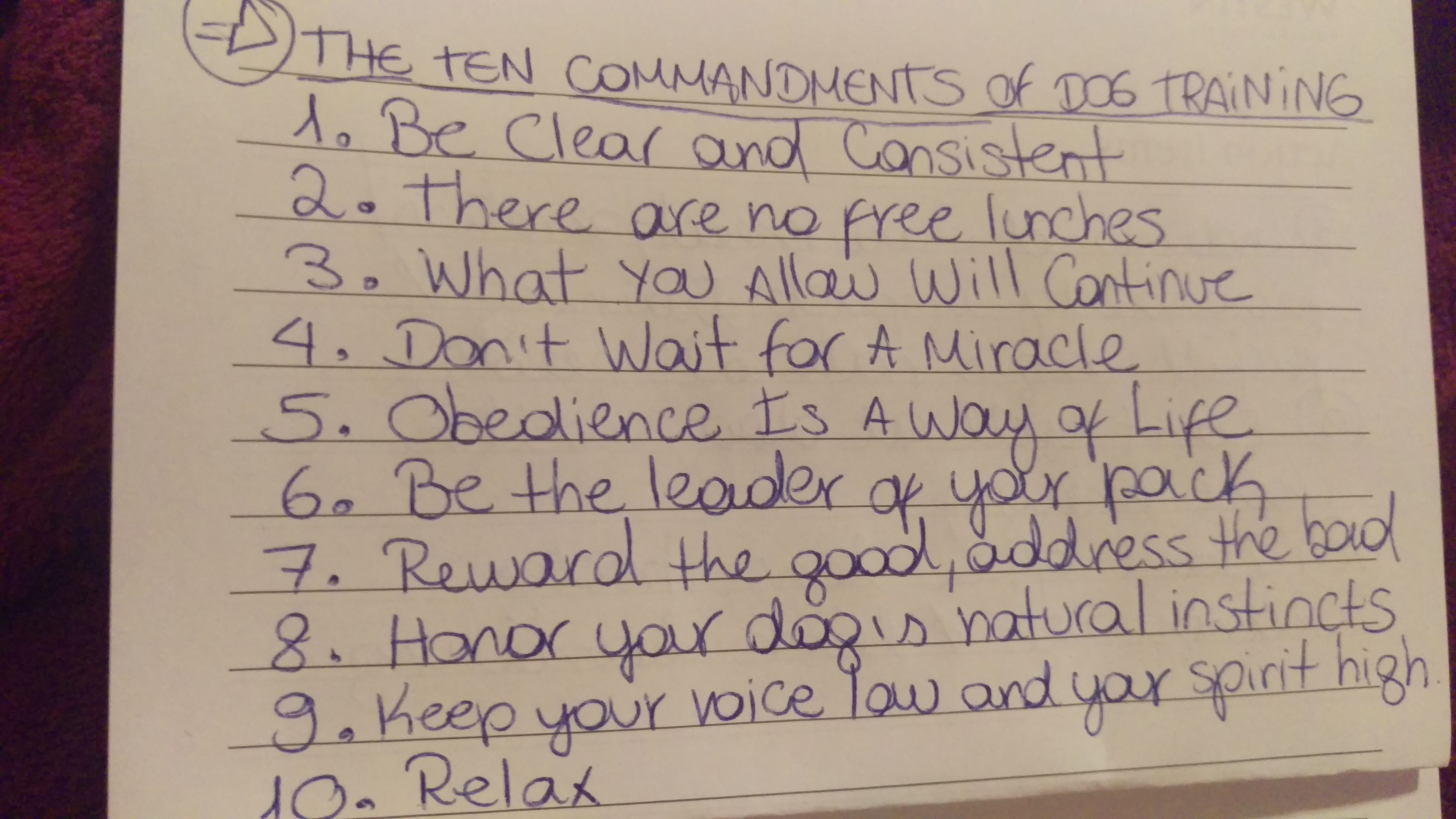 The Ten Commandments of Dog Training – Polite Pooch Academy Online