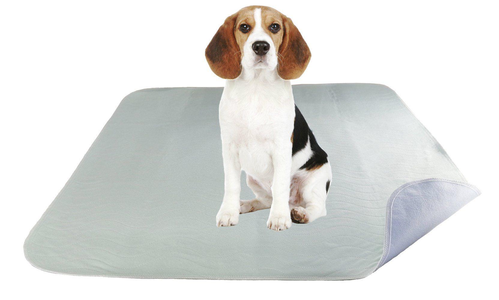 ZISU 2 Pack Washable Dog Training Pads Ultra Soft Large