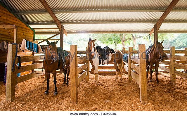 Horse Stables Stock Photos U0026 Horse Stables Stock Images .