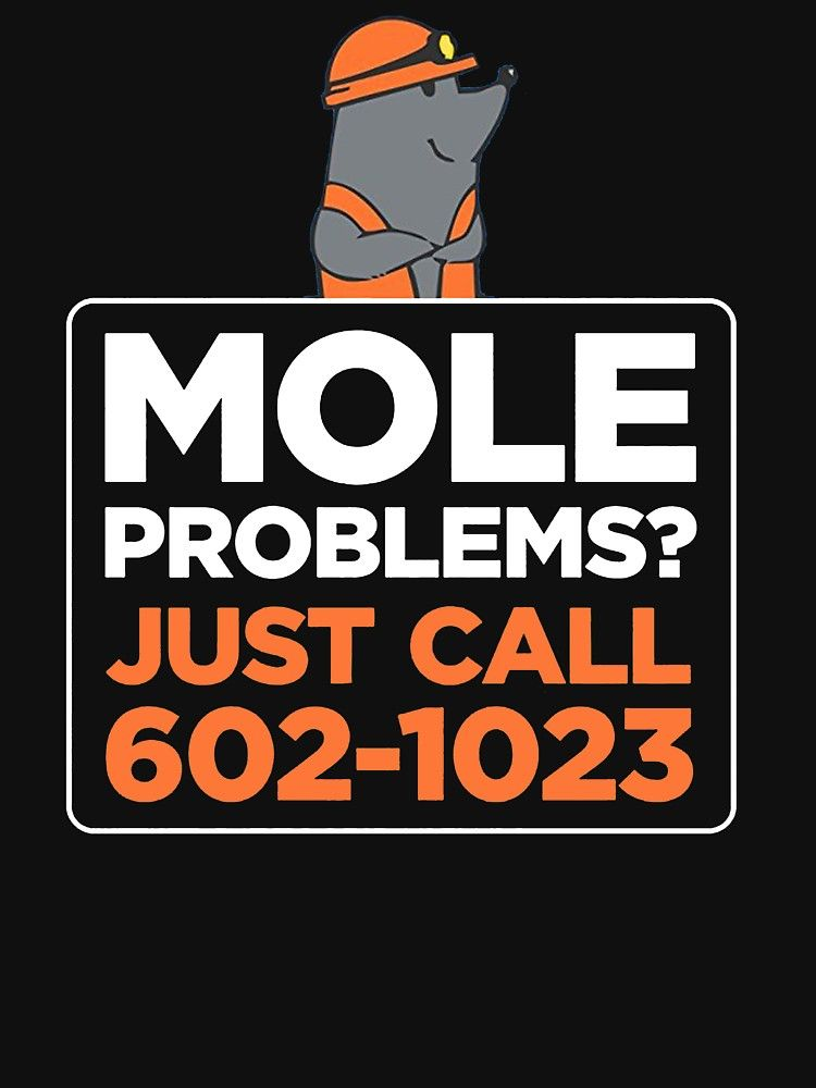 Funny Chemistry T Shirts Gifts Mole Problem Call Avogadro For