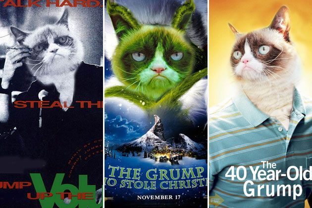 Grumpy cat movies bored tonight weve got something going on at grumpy cat movies bored tonight weve got something going on at the university of iowa check out our pins or find our events at our website cabuiowa thecheapjerseys Choice Image