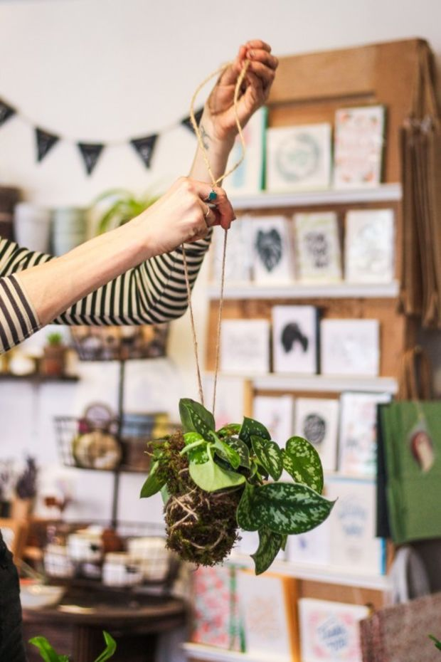 TRY THIS: KOKEDAMA HANGING PLANT This DIY Japanese bonsai makes the perfect home-brightener for spring.