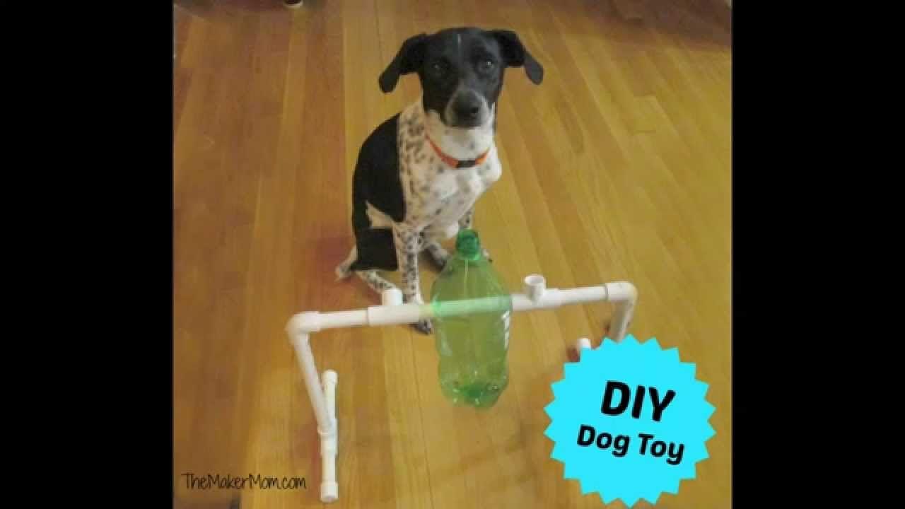 Fun Diy Dog Toy And Treat Dispenser Youtube Diy Dog Stuff Dog