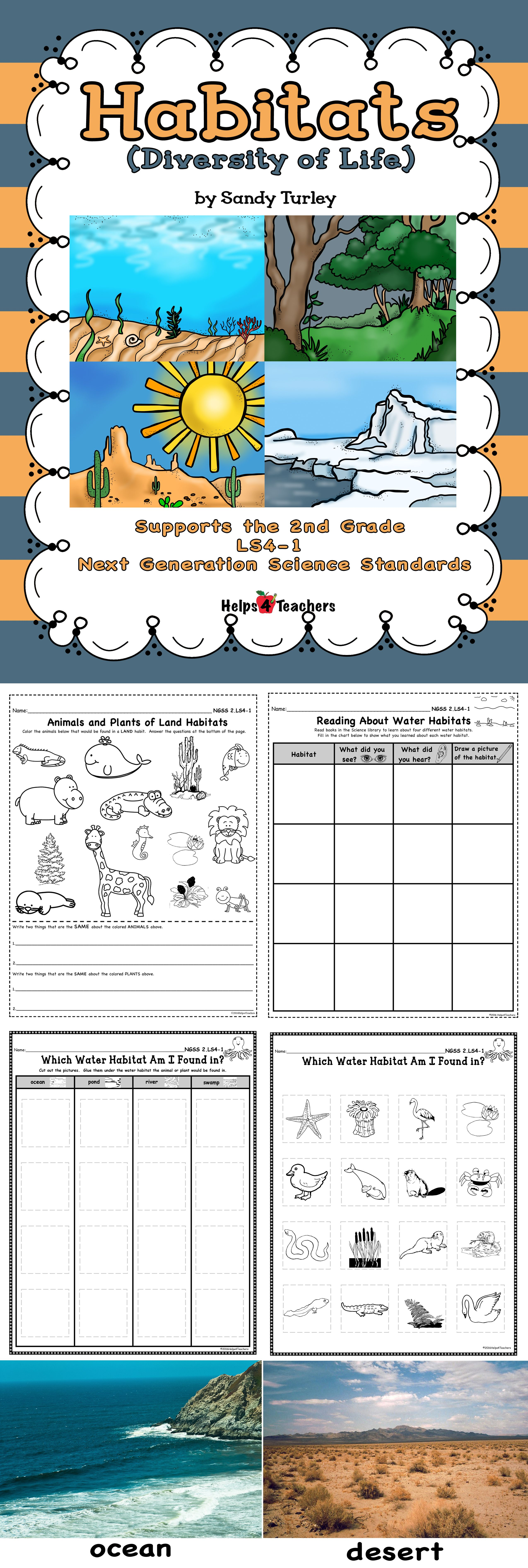 Terrific 6 Activities That Cover The 2nd Grade Next