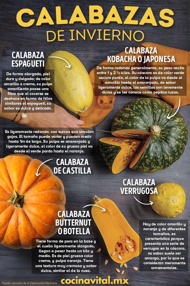 5 Tipos De Calabazas Comestibles Que Debes Conocer Tipos De Calabaza Calabaza De Invierno Calabaza