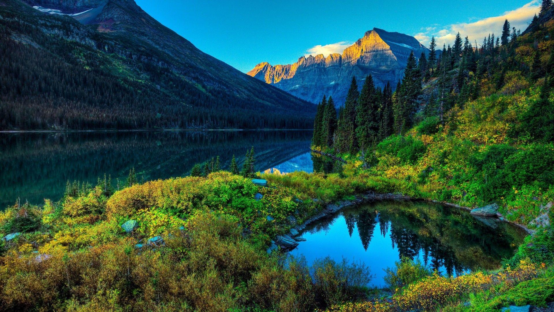 Fondos De Escritorio Paisajes Forest Grass Green Lake Paisaje Mountains Nature 1080x1920 Jpg Fondos De Escritorio Fondos De Pantalla Hd Fondos De Escritorio Hd