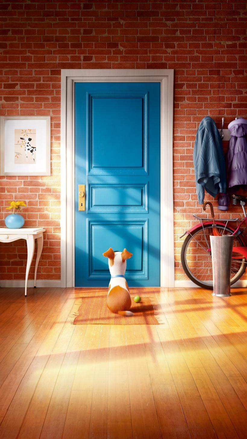 The Secret Life Of Pets 2016 Phone Wallpaper 2020 背景