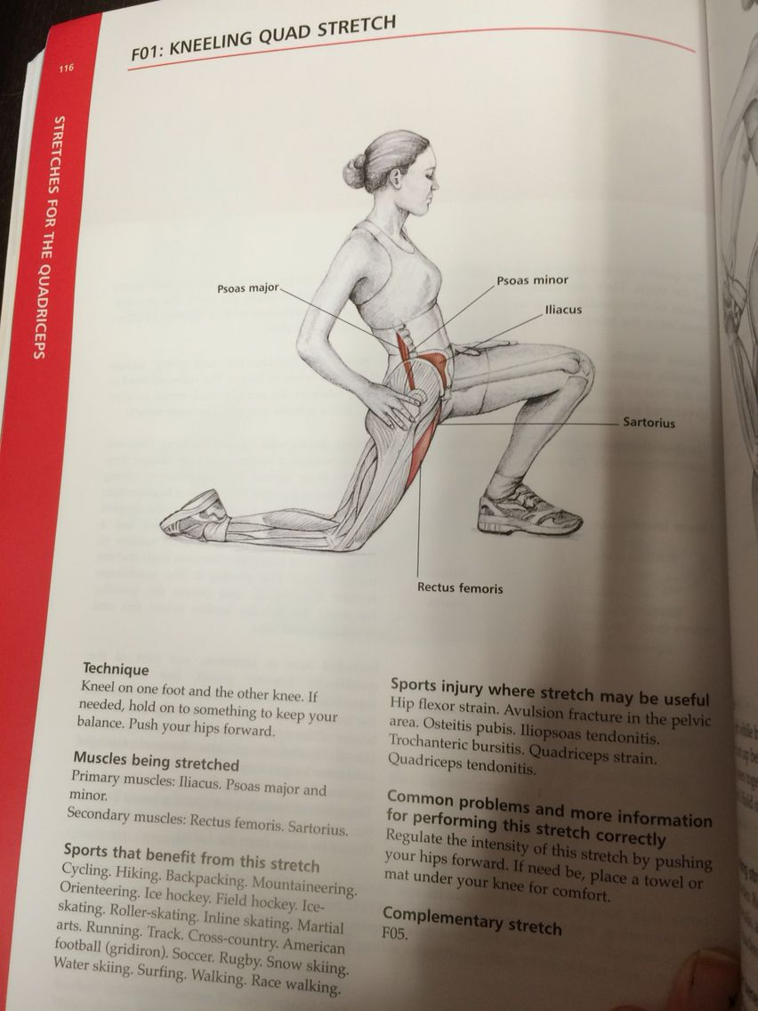 Pin by Katie Gross on Stretching book | Pinterest | Books