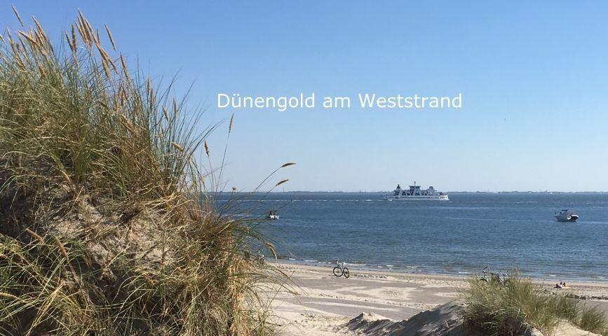Sand von der Nordseeinsel Norderney Weststrand Deutschland Nordsee