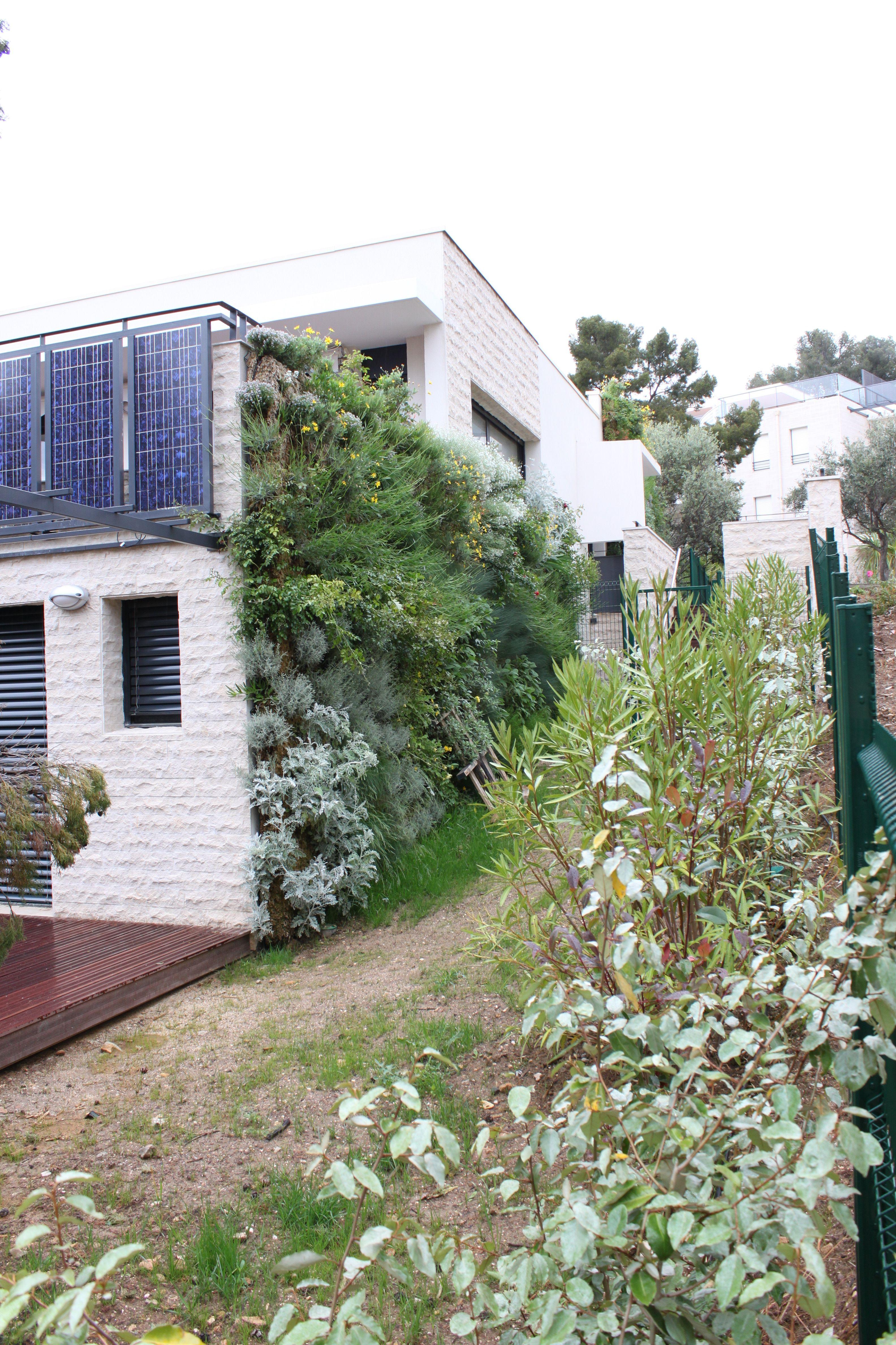 Creation Mur Vegetal Exterieur mur végétal exterieur | mur végétal exterieur, mur vegetal