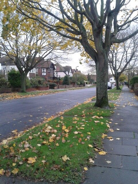 Autumn,  Cliftonville