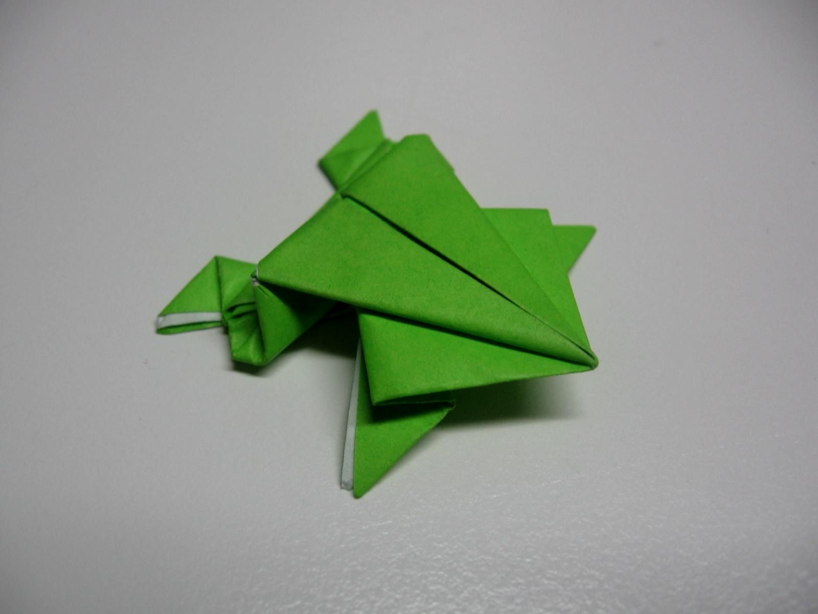Visualizing the magic mostly magic donna june cooperdonna june how to make origami jumping frog jeuxipadfo Images