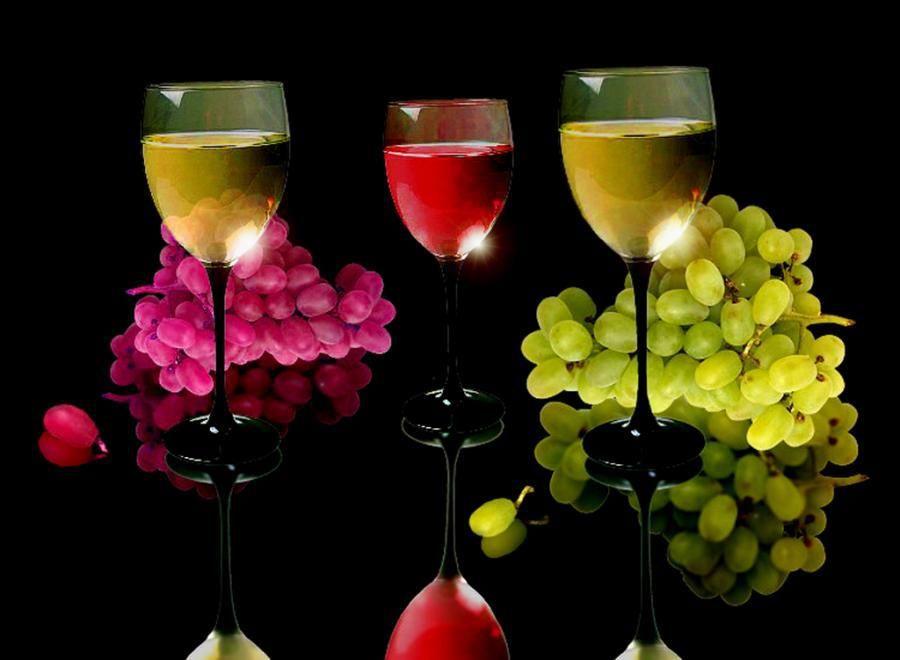 """""""Amigo é o vinho mais tintoo vinho mais brancoé água de afagoo rio mais mansoamigo é o caminho"""