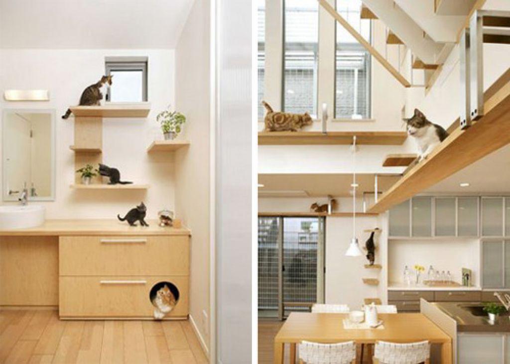 Elegant Modern Cat Tree Furniture Cat Friendly House Design From Japan Hauspanther