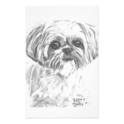 Shih Tzu Coloring Pages Shih Tzu Shih Tzu Dog Shih Tzu Puppy