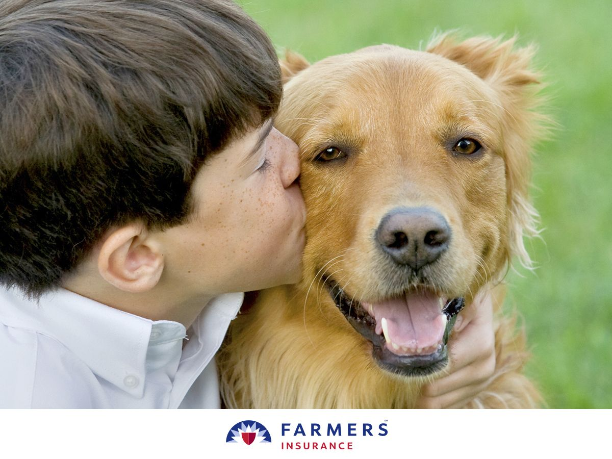 Farmers Introduces Pet Insurance Dog Poster Pet Care Printables Pets