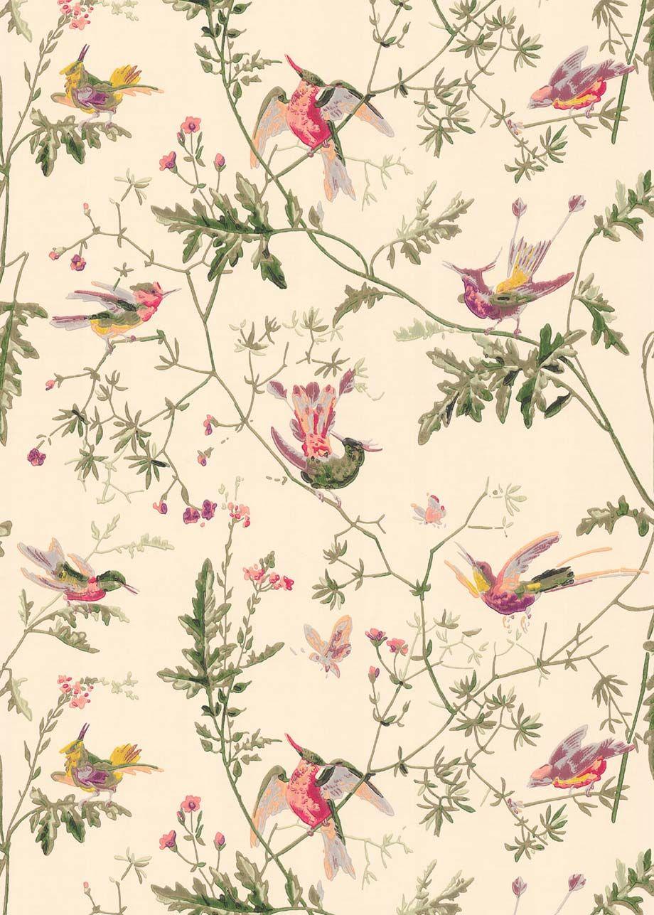 wallpaper hummingbirds 23621001 cole son wallpaper pinterest tapeten tapeten ideen und. Black Bedroom Furniture Sets. Home Design Ideas