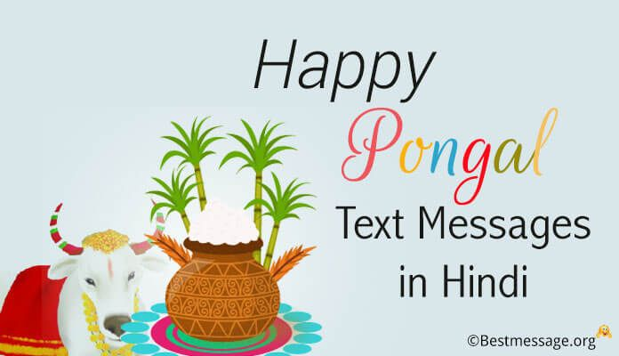 Happy pongal festival wishes pongal text messages hindi pongal happy pongal festival wishes pongal text messages hindi pongal greetings to friends family m4hsunfo