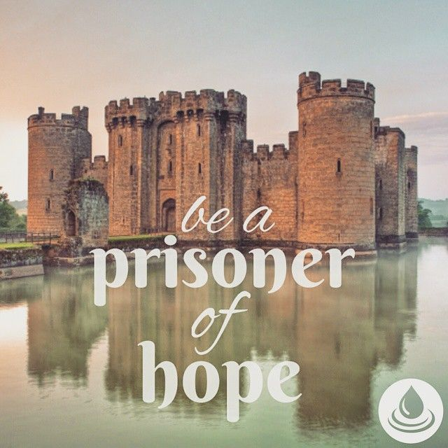 Return to the stronghold, O prisoners who have the hope; This very day I am…