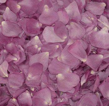 Freeze Dried Lavender Rose Petals Dried Rose Petals Rose Petals Wedding Rose Petals