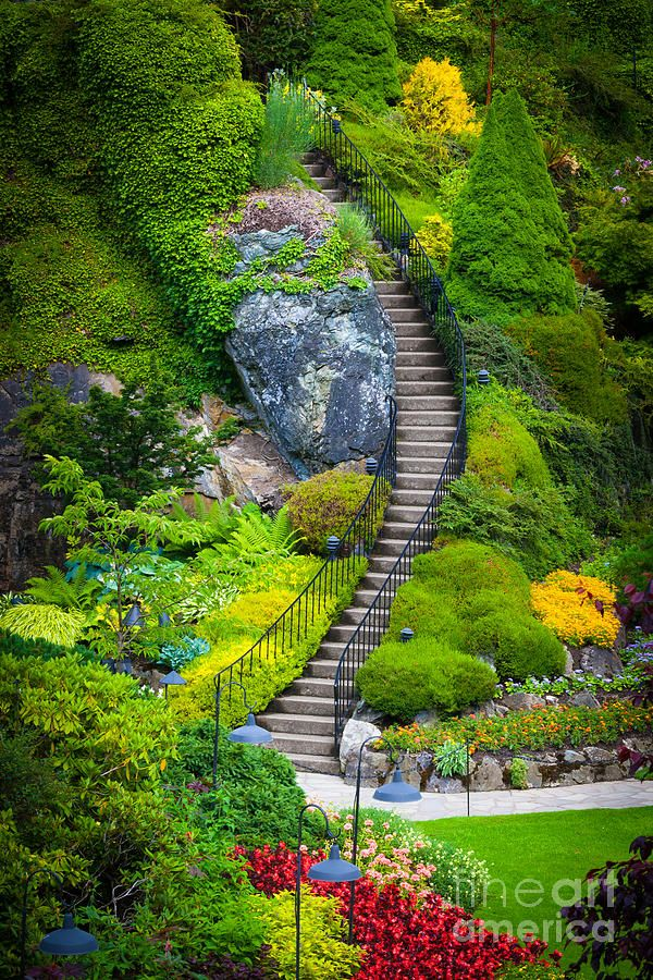 3858d2f491178b9d8f37cf93f06c6bf6 - How Much Is Admission To Butchart Gardens