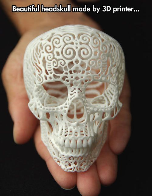 Headskull Made With A 3d Printer Skull Skull Art Cranium