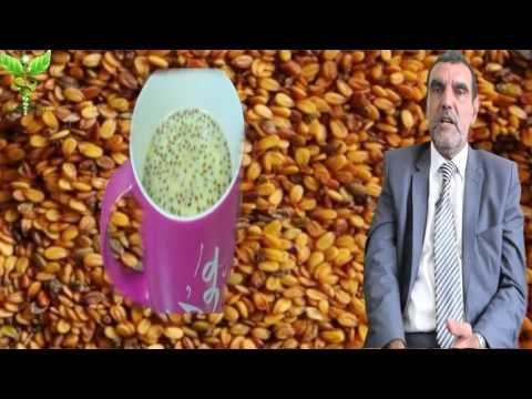 فوائد حب الرشاد و طريقة استخدام حب الرشاد Dr Mohamed Al Fayed محمد الفايد Youtube Food Animals Dog Food Recipes Food