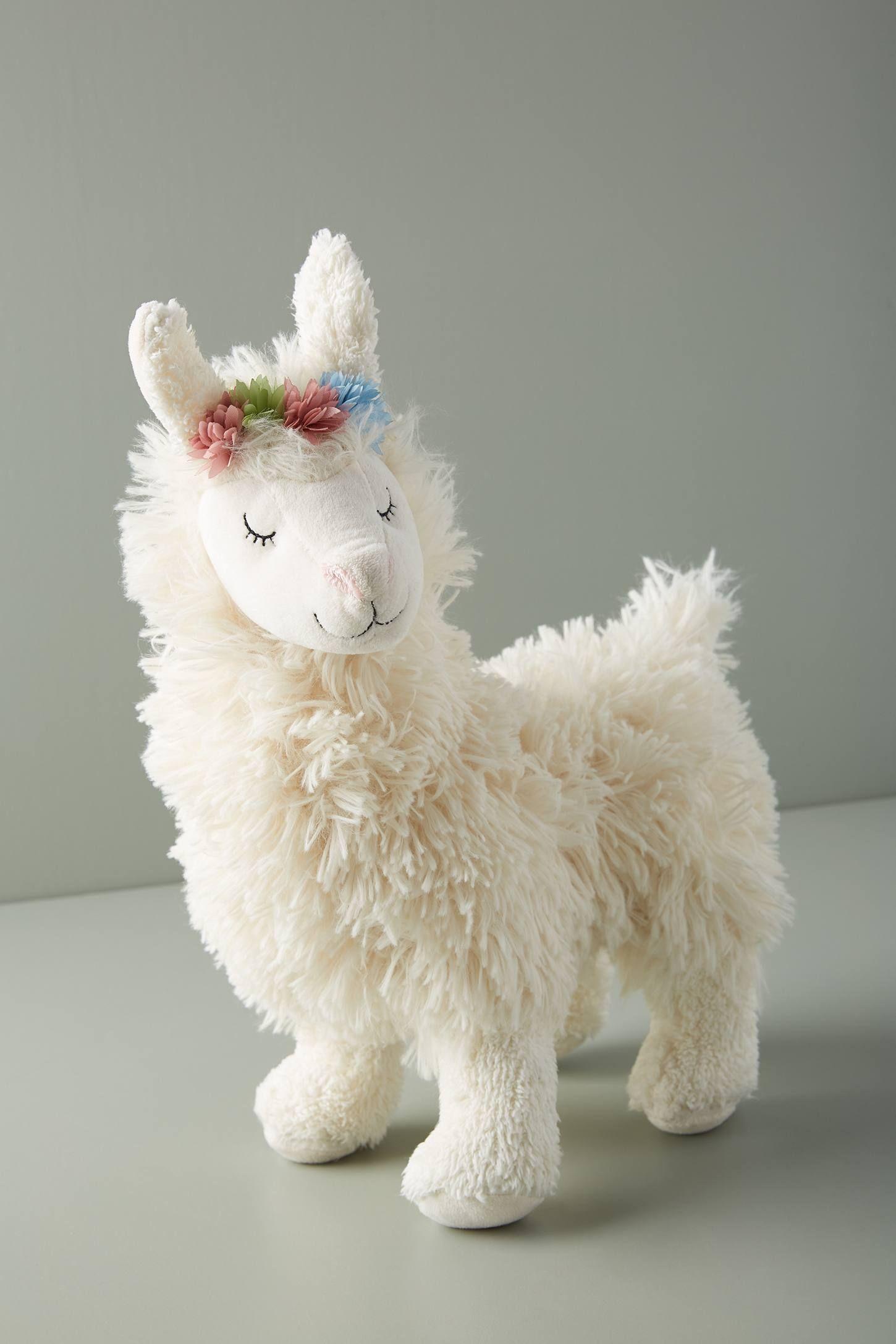 Pin on llama