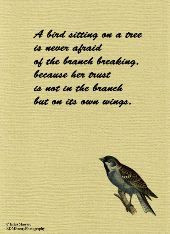 A Bird Sitting On A Tree Quote Inspirational Quotes Erica Massaro