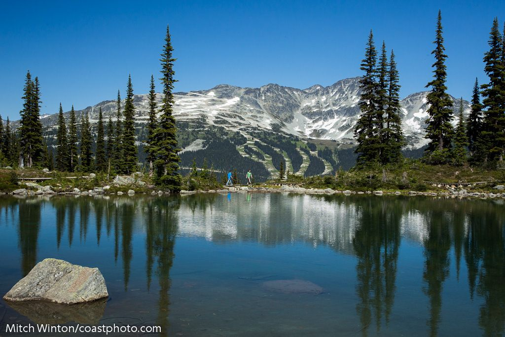 Awesome alpine sightseeing adventures available during the Summer season in Whistler resort. Beautiful BC, Canada is the perfect place to visit.