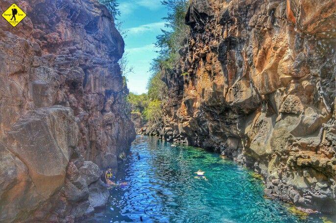 Recorrido a Las Grietas, Puerto Ayora, Isla Santa Cruz, Galápagos, Ecuador...!! | Outdoor, River, Pool