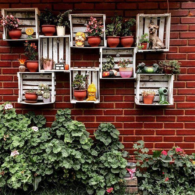 Paredes vivas 🌹• #photoofday #photobeauty #streetphotography #instagrames #streetscene #street #paredesvivas #paredesverdes #nature #igers #igersperu #felizdomingo