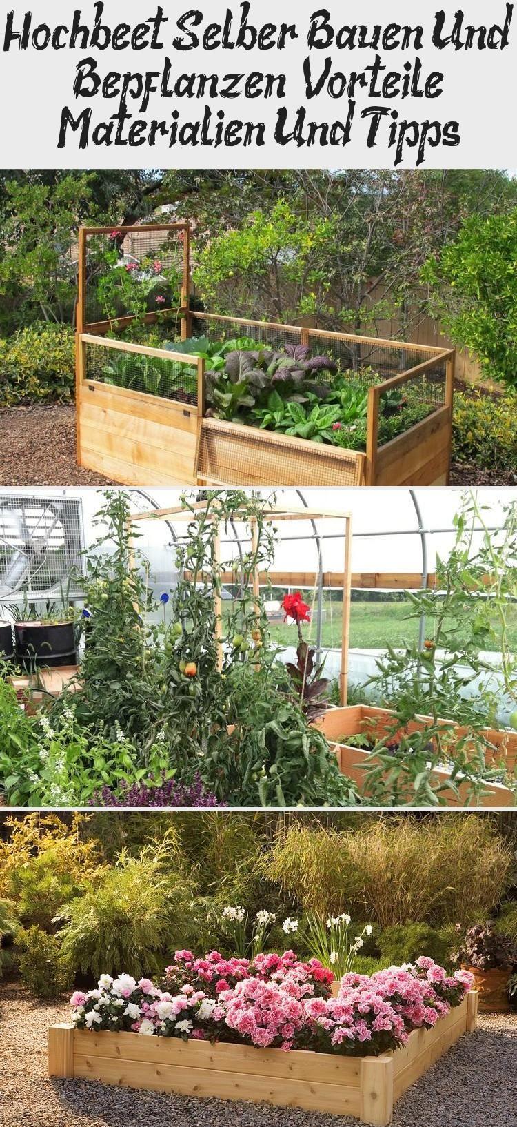 Garten Hochbeet Selber Bauen Und Bepflanzen Vorteile Materialien Und Tipps Hochbeet Selber Bauen Und Bepflanzen In 2020 Outdoor Structures Plants Outdoor