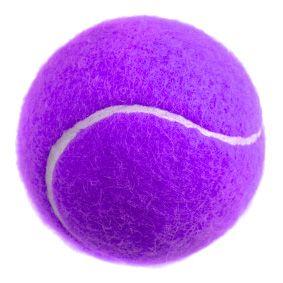 Purple Tennis Ball Softball Size Tennis Ball Purple